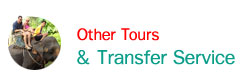 Other Tours & Transfer Service